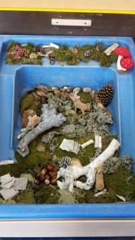 Het herfstbos. Een geode invulling van de zand/watertafel!